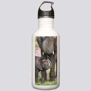 ROMANCE ELEPHANT Stainless Water Bottle 1.0L
