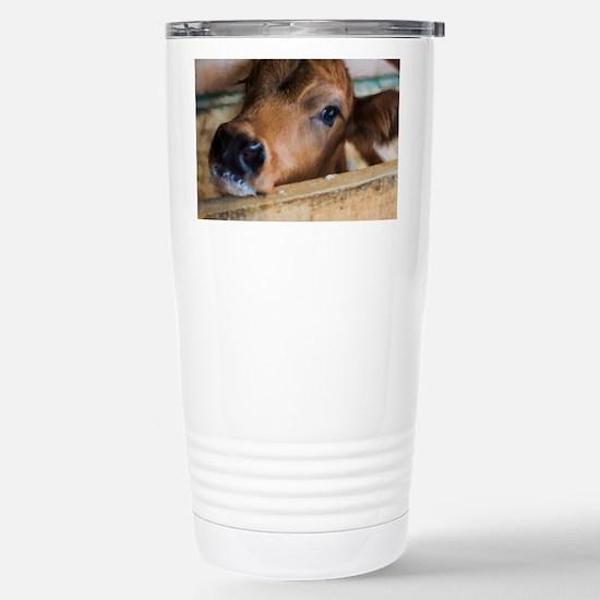 Calf Stainless Steel Travel Mug