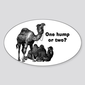 Funny Camels Sticker