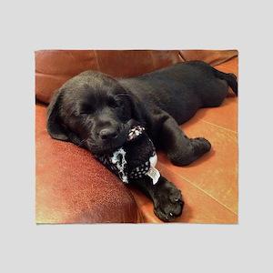 Black lab puppy Throw Blanket