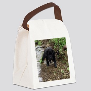 Black lab puppy Canvas Lunch Bag