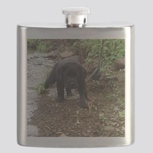 Black lab puppy Flask