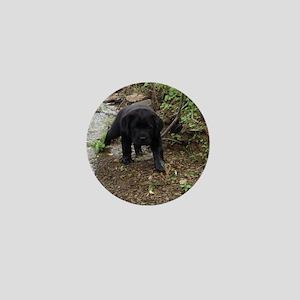 Black lab puppy Mini Button