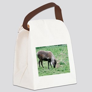 Caribou with Large Antlers Canvas Lunch Bag