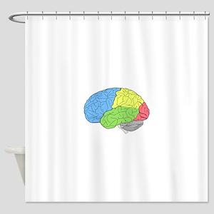 Primary Brain Shower Curtain