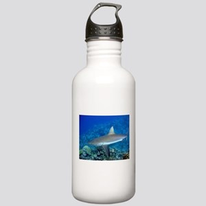 Grey Reef Shark Stainless Water Bottle 1.0L
