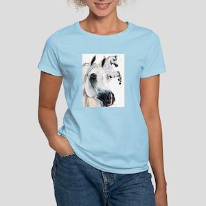 Grey Arabian Ash Grey T-Shirt