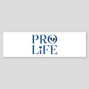 Pro Life Blue Bumper Sticker
