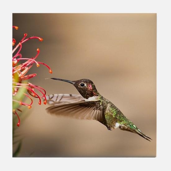 Unique Birder Tile Coaster