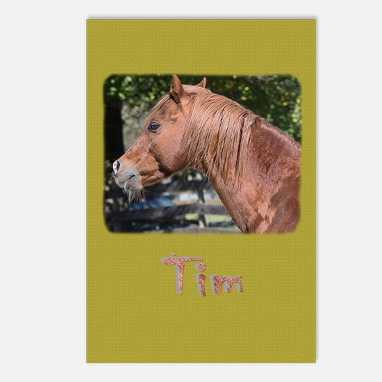 Funny Pony horse rescue Postcards (Package of 8)