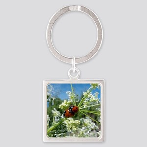 luck beetle Square Keychain