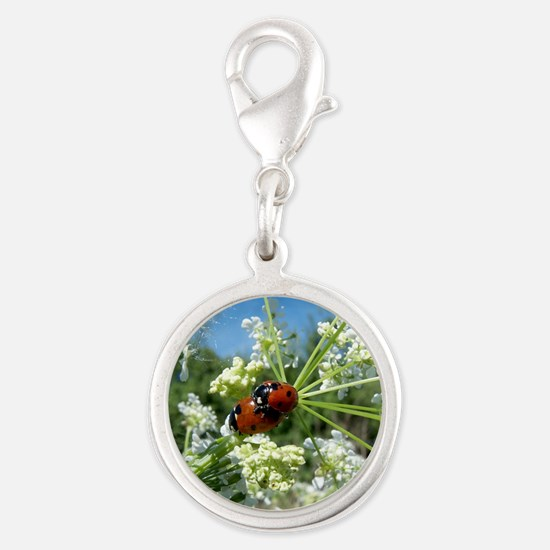 luck beetle Silver Round Charm