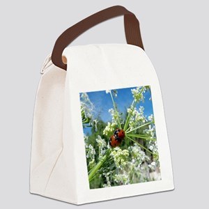 luck beetle Canvas Lunch Bag