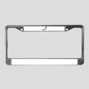 Animated Blue & Grey Pigeo License Plate Frame