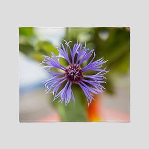 Flower of a cornflower Throw Blanket