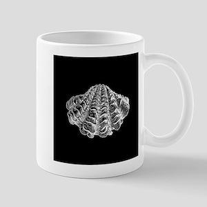 Black Seashell Mugs