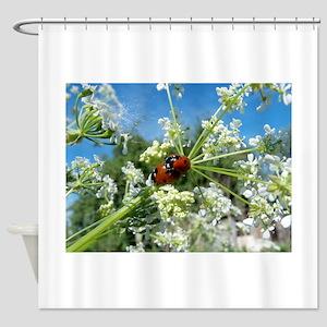 luck beetle Shower Curtain