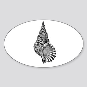 Black and white Conch shell Sticker