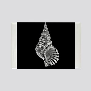 Black Conch shell Magnets
