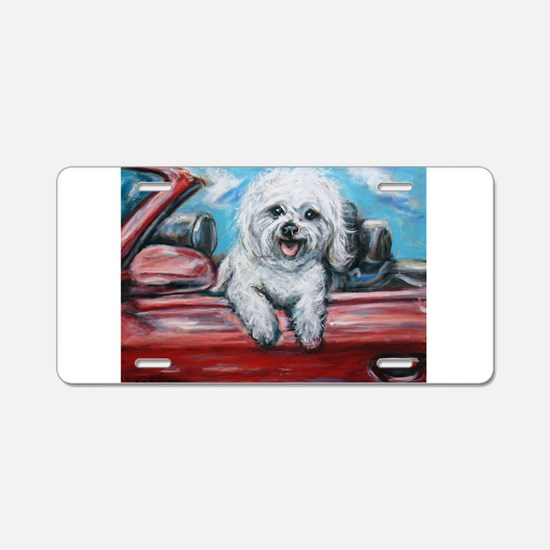 Cute Summer Aluminum License Plate
