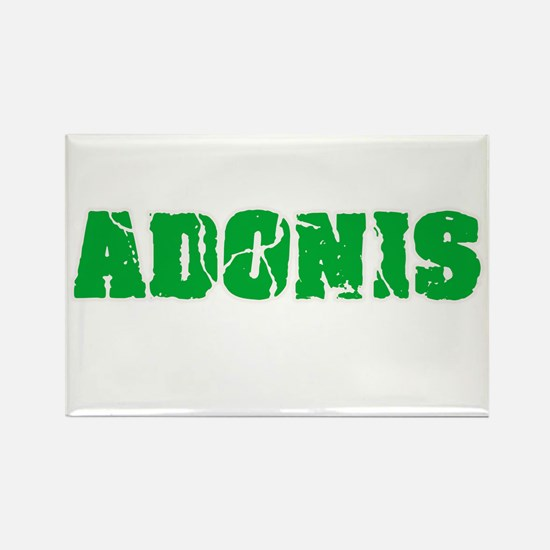 Adonis Name Weathered Green Design Magnets