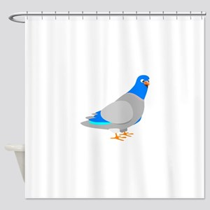 Animated Blue & Grey Pigeon Shower Curtain