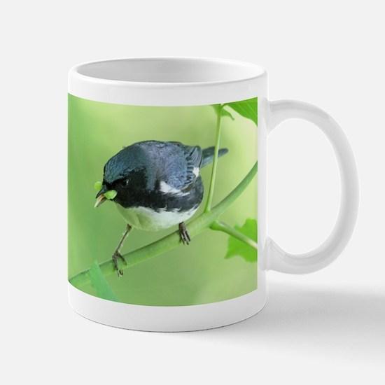 Black-Throated Blue Warbler Mugs