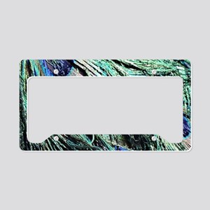 Wet Peacock Feathers License Plate Holder
