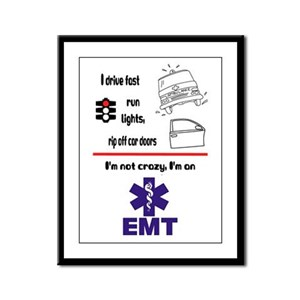 Not Crazy EMT Framed Panel Print