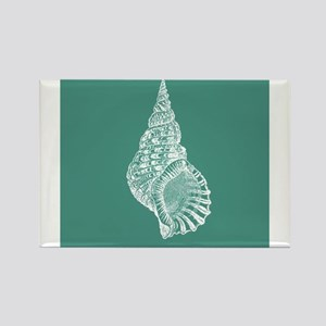 Turquoise Conch shell Magnets