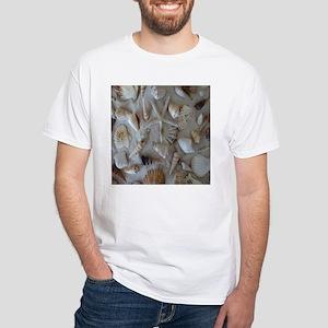 Beautiful Seashells T-Shirt