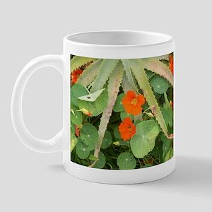 Aloe Gold Mug