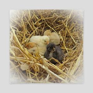 chicks Queen Duvet