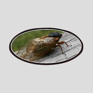 Cicada Patch