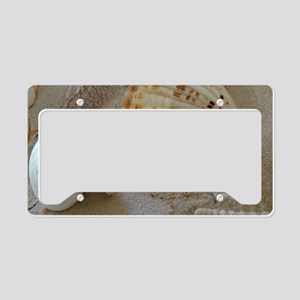 Beautiful Seashells License Plate Holder