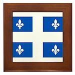 Official Flag with PMS 293 Co Framed Tile