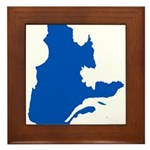 Map with PMS 293 Color Framed Tile