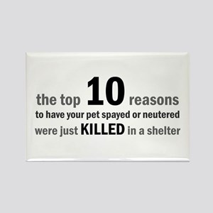 10 Reasons to Spay/Neuter Rectangle Magnet