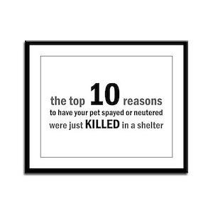 10 Reasons to Spay/Neuter Framed Panel Print
