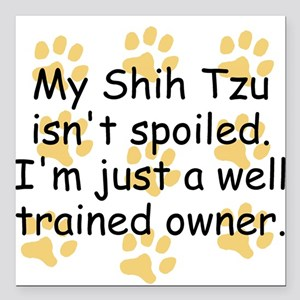 """Well Trained Shih Tzu Owner Square Car Magnet 3"""" x"""