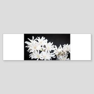White flowers Bumper Sticker