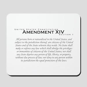 Amendment XIV Mousepad