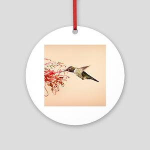 Annas Hummingbird Ornament (Round)