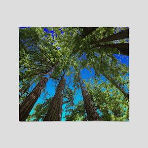 Muir Woods treetops Throw Blanket