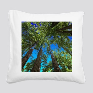 Muir Woods treetops Square Canvas Pillow