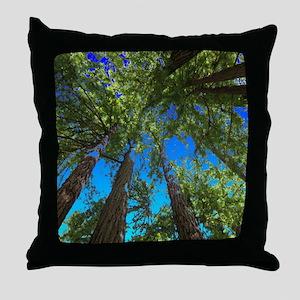 Muir Woods treetops Throw Pillow