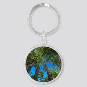 Muir Woods treetops Keychains
