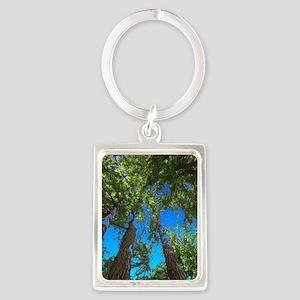 Muir Woods treetops Keychains