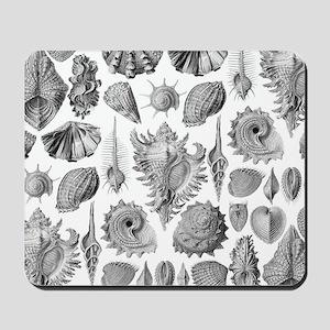 Vintage Seashells Mousepad