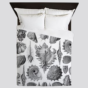 Vintage Seashells Queen Duvet